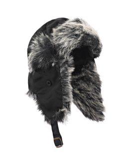 2016 CAP Polar